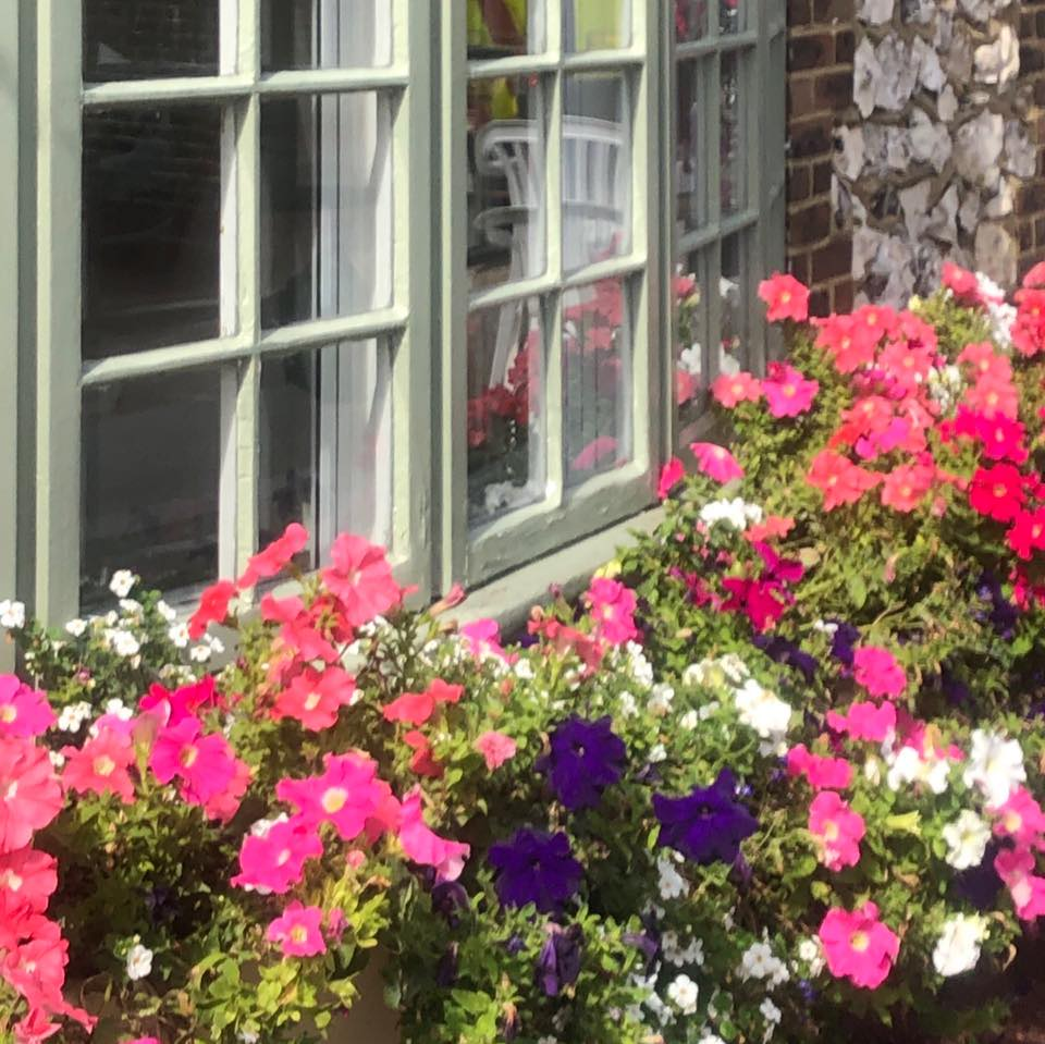 Beautiful flowers outside the home | Country Lodge Nursing Home West Sussex