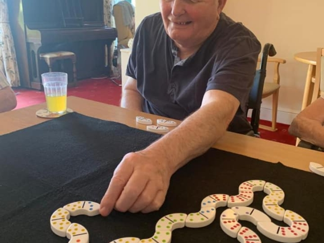 Dominos | Country Lodge Nursing Home in West Sussex