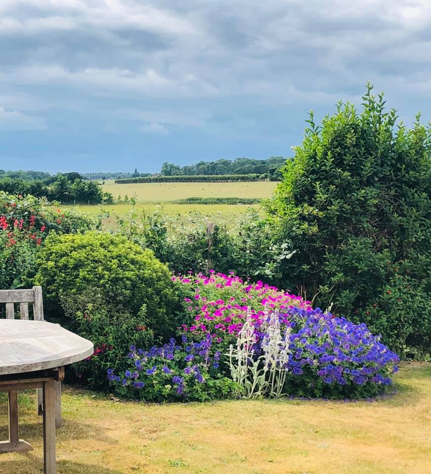 Looking over the South Downs | Country Lodge Nursing Home in West Sussex