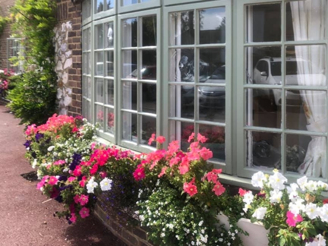 New window box flowers | Country Lodge Nursing Home West Sussex